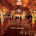 7__innovative_events_expert_mehndi